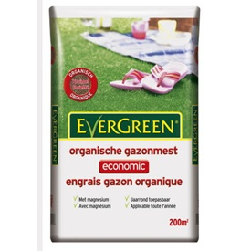 Evergreen Engrais gazon economic